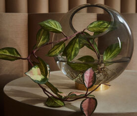 AYTM Globe Vase W. Stand 3