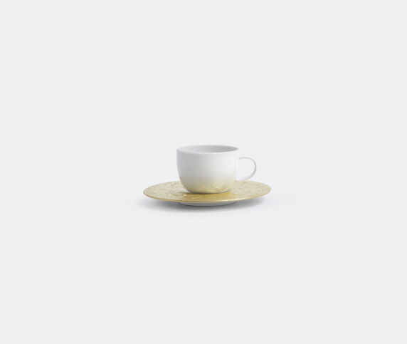 Rosenthal 'Magic Flute Sarastro' low cup with saucer, small