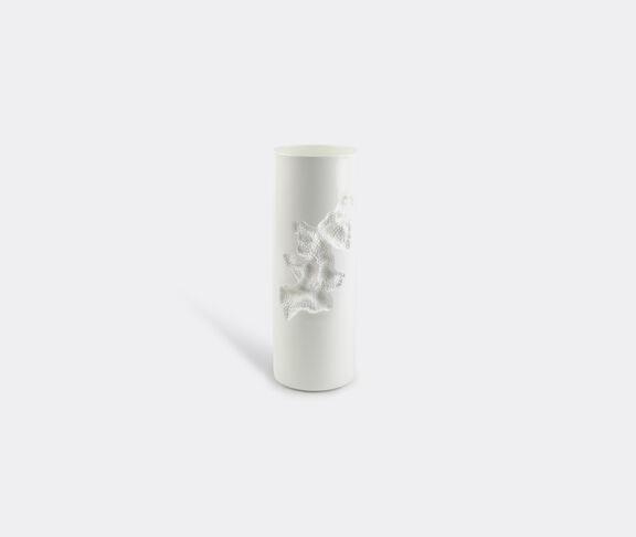 1882 Ltd Postive Vase 2
