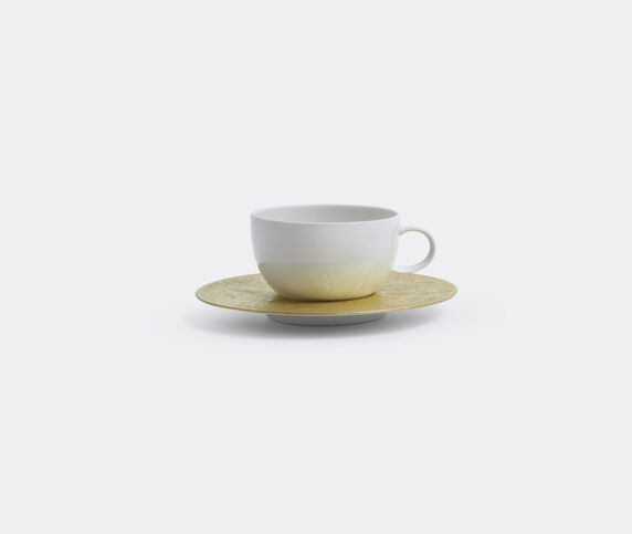 Rosenthal 'Magic Flute Sarastro' low cup with saucer, low